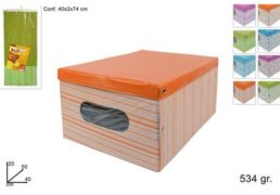 BOX ABITI CM 50X40X25